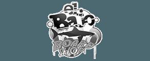 flyer-surfboard-tiendas-elbajo
